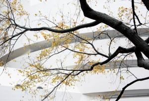 2008-10-28 (detall del Guggenheim)